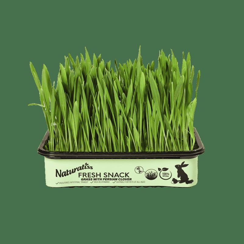 Hierba fresca Naturaliss con trébol persa